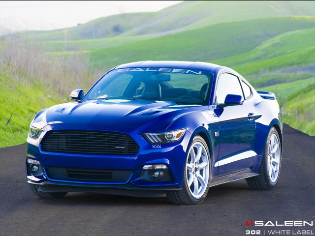 SALEEN_302_WHITE_LABEL_MUSTANG_GT_pic-1