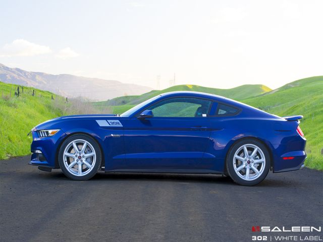 SALEEN 302 WHITE LABEL MUSTANG GTSALEEN 302 WHITE LABEL MUSTANG GT