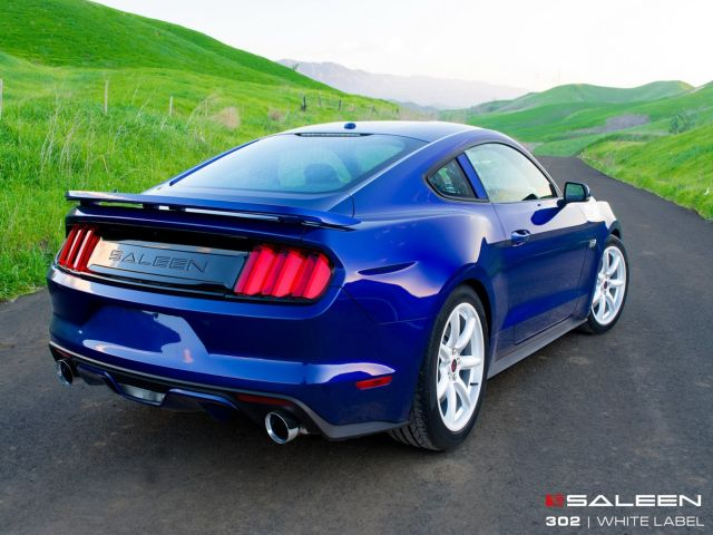 SALEEN 302 WHITE LABEL MUSTANG GT
